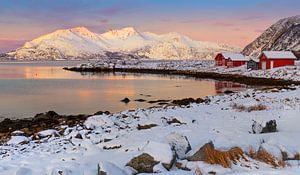 Rode huisjes aan Noorse kust van