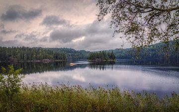 Mooi Västra Götalands Län - Zweden van Mart Houtman