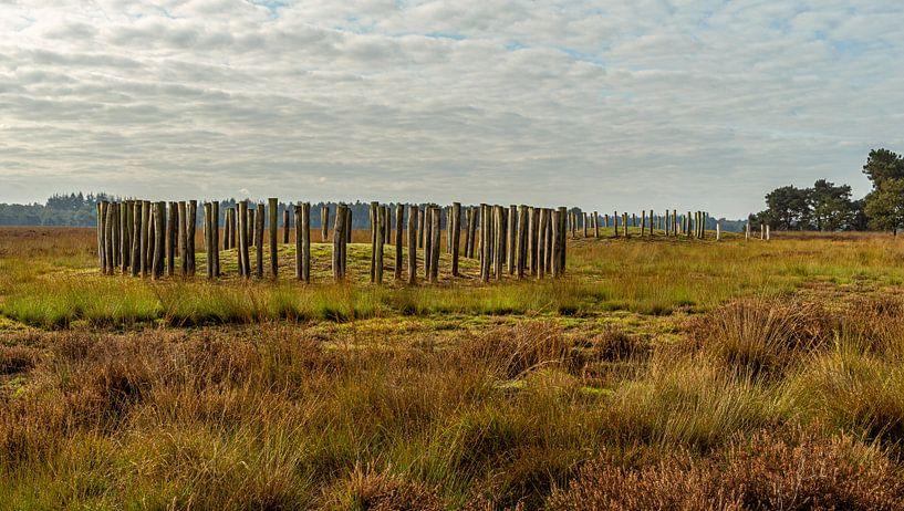 Grafheuvels uit de Bronstijd van Ingrid Aanen