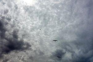 Een bewolkte dag van