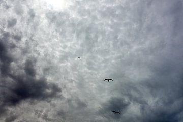 Een bewolkte dag van Hans Heemsbergen