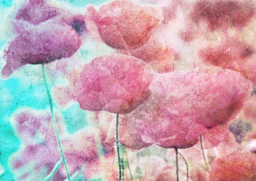 Poppies van Jacky Gerritsen