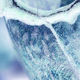 IJsblauwe winter sur Lotte Veldt