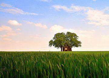 Kapelletje tussen het jonge graan. van Patrick Hartog