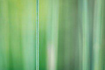 Groen is gras van Jefra Creations