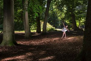 Ballet van Rene Kuipers