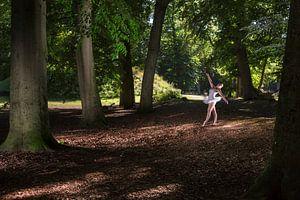 Ballet van