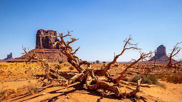 Monument Valley van Mike Hermes