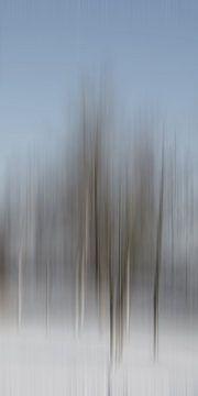 Winterbäume von Christine Nöhmeier