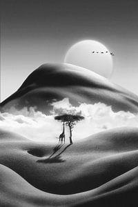 Kilimandscharo von Jonas Loose