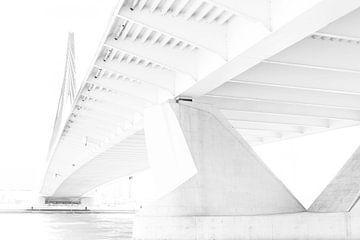 Erasmusbrücke von Marieke de Boer