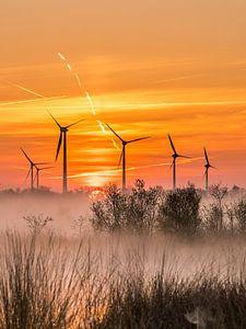 Windmolens in natuurgebied