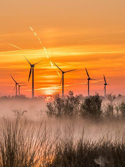 Windmolens in natuurgebied van Hans Jansen - Lynxs Photography
