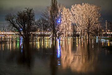 Hochwasser in Köln 2021 #3 von Stefan Havadi-Nagy