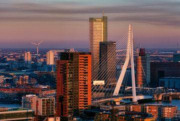 De Erasmusbrug in Rotterdam tijdens zonsondergang von Roy Poots