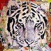 Tigerstyle no2 van Michiel Folkers thumbnail
