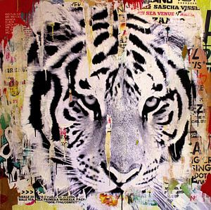 Tigerstyle no2