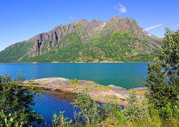 Sløverfjorden van Gisela Scheffbuch