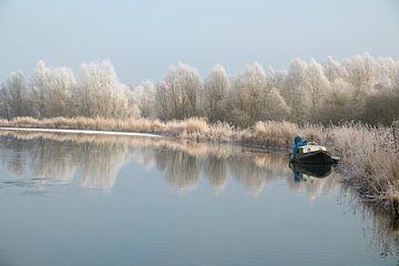 Kaltes Wasser von Arjen Roos