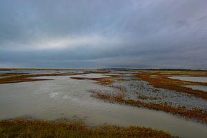 Rye Harbor van Verrassend Brabant
