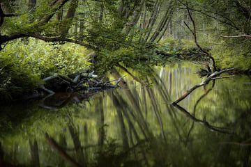 Jenseits des Flusses von Kees van Dongen