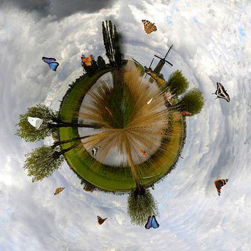 De Langereis met vlinders in mijn kleine planeet van