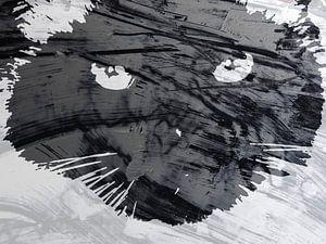 Kattenkunst - Mauro 3 van