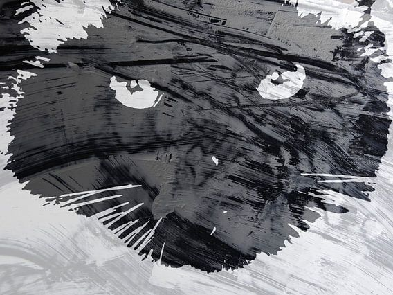 Kattenkunst - Mauro 3 van MoArt (Maurice Heuts)