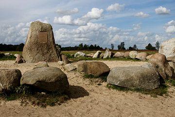De Baak, Balloerveld, Pieterpad landschap von Anita Moek