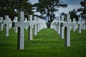 Amerikaanse begraafplaats van Jim Looise