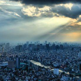 Tokyo Sunset van Inge van den Brande