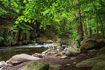 Landschaft im Bodetal im Harz von Rico Ködder