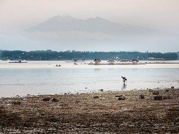 Een Vroege Visser nabij Moalboal Filipijnen van Rik Pijnenburg