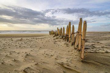 Schapenhek op het strand van Dirk van Egmond