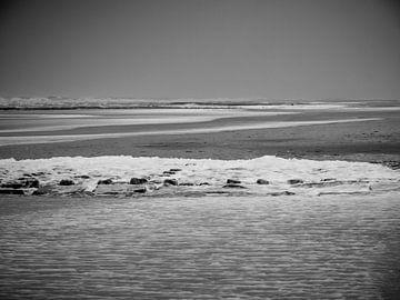 noir et blanc au bord de la mer