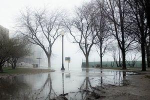 'Lakefront Trail', Chicago van