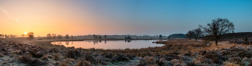 Misty Sunrise Pikmeeuwenwater van William Mevissen
