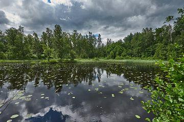 Schwedische Landschaft 181 von Geertjan Plooijer