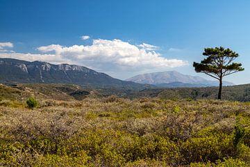Landschap op Rhodos van Reiner Conrad