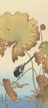 Japanische Bachstelze auf der Lotuspflanze des Ohara Koson