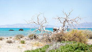 Zonnig strand op Chrissi Island, Griekenland van Herman Kuiper