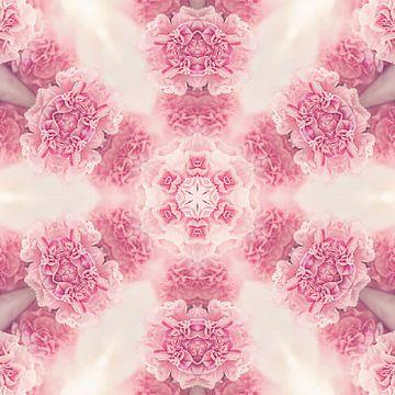 Mandala avec oeillets roses sur Sabine Wagner