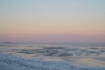 Lijnen op het bevroren Markermeer van Barbara Brolsma