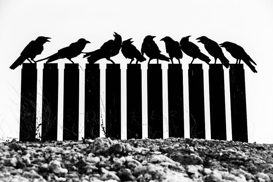vogelstand van Lorena Cirstea