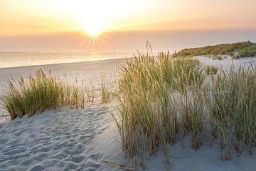 Zonsopgang in de duinen van het Elleboog Natuurreservaat van Christian Müringer