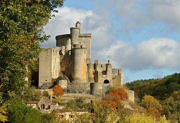 Chateau de  Bonaguil, France van