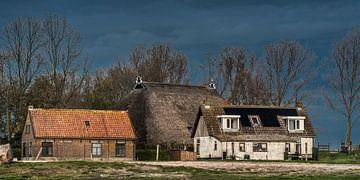 Deichhäuser und Bauernhof bei Laaxum im Südwesten von Friesland von Harrie Muis