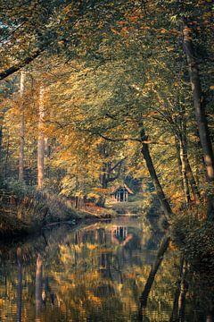 Home Alone von Marco de Graaff