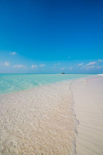 Maldives 9 sur Andy Troy