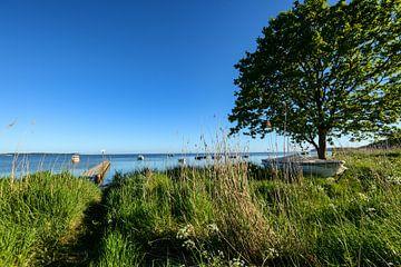 Port de pêche Groß Stresow, près de Putbus sur l'île de Rügen